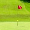 ゴルフにハマっています